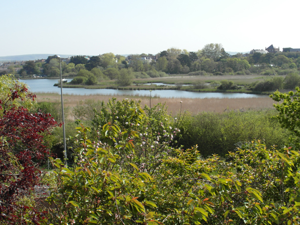 View of Radipole Lake